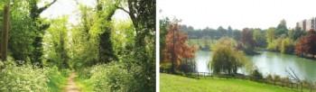 Parco della Cava Poggio Berni RN
