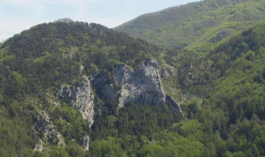 Parco Naturale del Bosco di Tecchie Cantiano PU