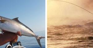 Sport Pesca