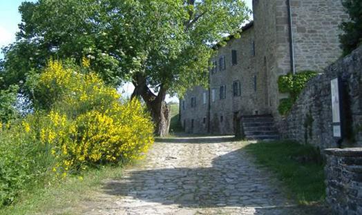Castello Pietrarubbia PU
